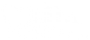 Lehigh Valley Oral Surgery & Implant Center logo